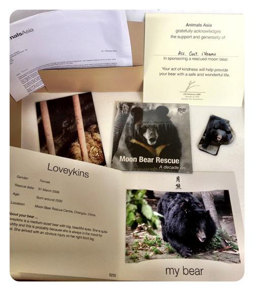 materiale sull'adozione degli orsi della luna