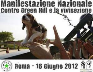 manifestazione_16giugno_roma
