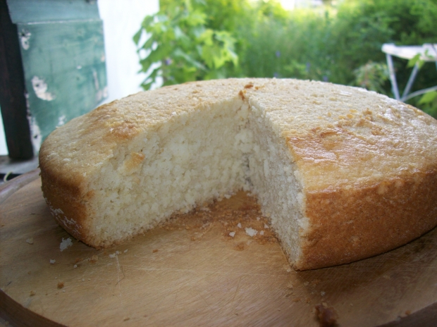 Pan di spagna Vegan